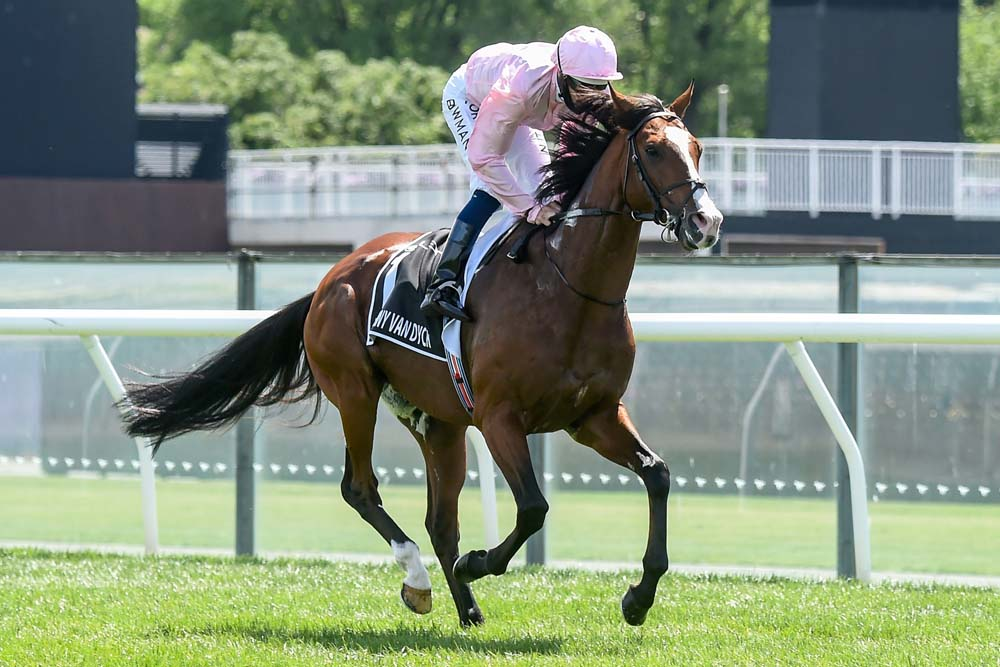 This handout photo taken and received from Racing Photos on November 3, 2020 shows Irish horse Anthony Van Dyck with jockey Hugh Bowman heading to the barriers for the start of the Melbourne Cup at Flemington Racecourse in Melbourne. (Photo by Brett Holburt / RACING PHOTOS / AFP) / EDITORS NOTE ----RESTRICTED TO EDITORIAL USE MANDATORY CREDIT