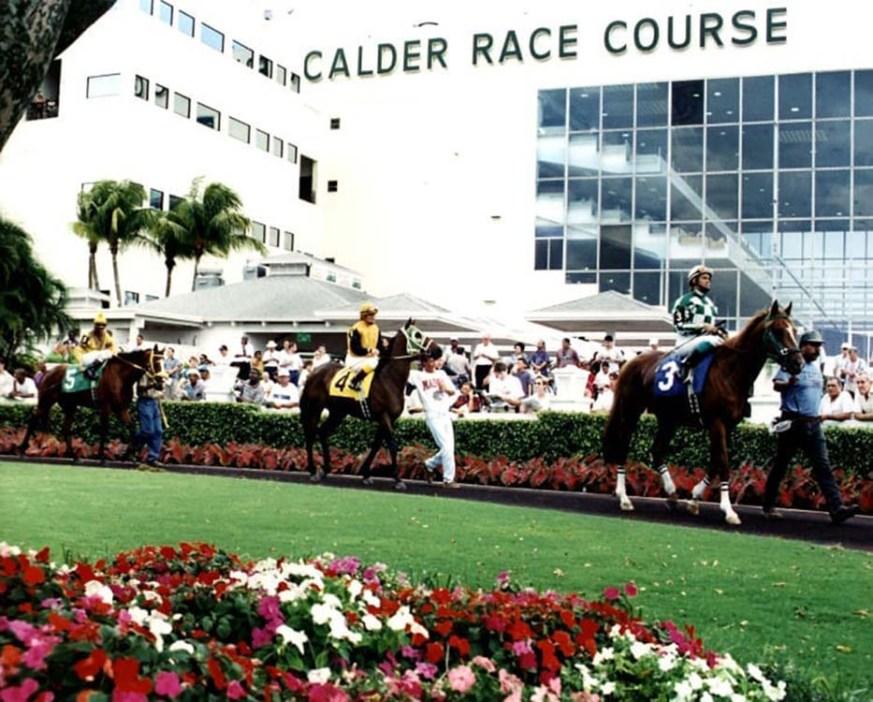 Calder-Race-Course