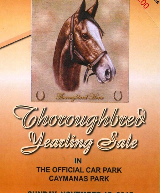 YEARLING SALE 2015