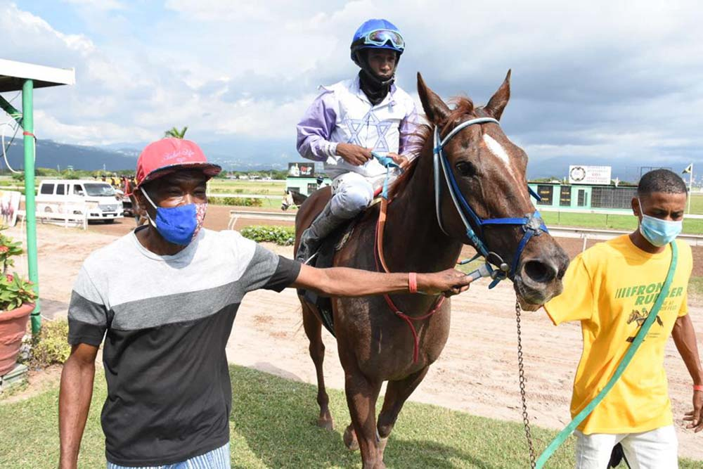 Freight Train (Jerome Innis) being escorted into the winners' enclosure.