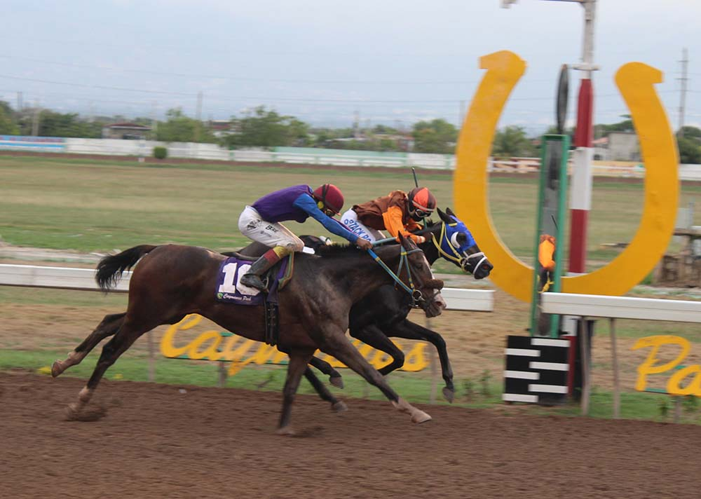 A NOSE - Heavenly Glitter on the inside wins by a nose over Sir John. (Photo: Kimberly Bartlett)