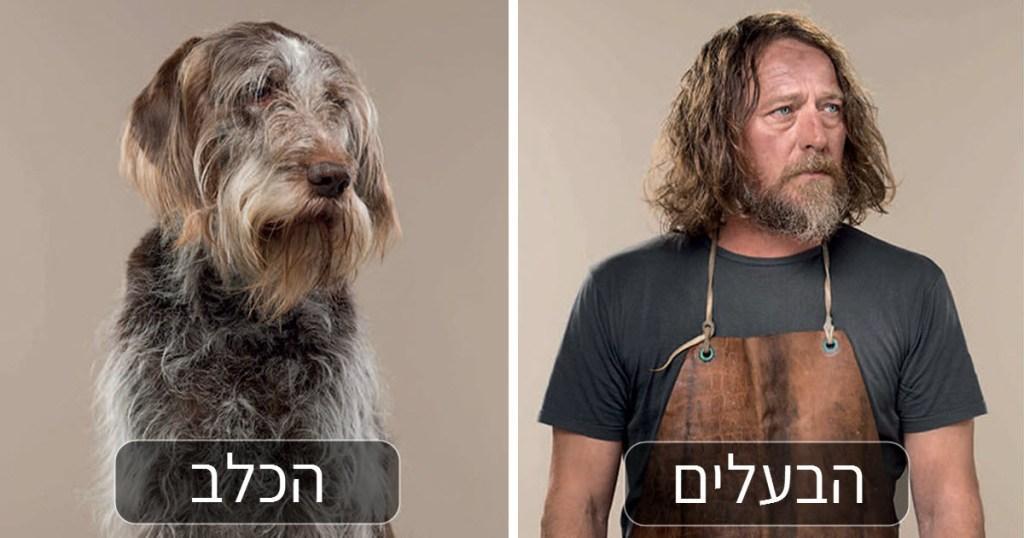 לא סתם אומרים שכלבים דומים לבעליהם...