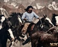 غاوتشو-رعاة-البقر-في-الأرجنتين-2