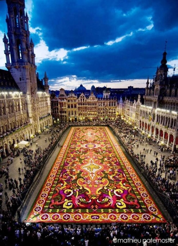 Carpet-Of-Flowers-Brussels-Belgium