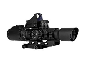 scope with reflex sight on top