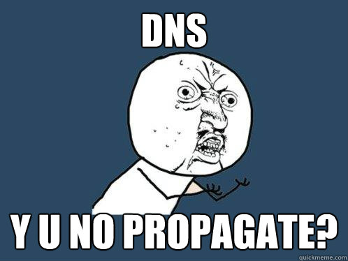 DNS y u no propagate? - DNS y u no propagate?  Y U No