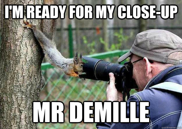 Image result for i'm ready for my closeup mr demille