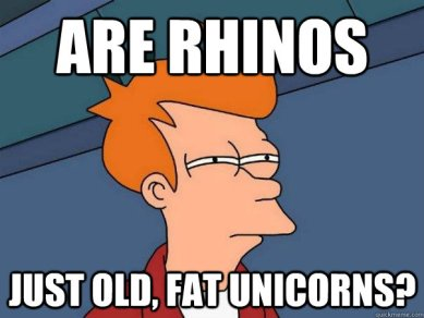 rhinos are fat unicorns