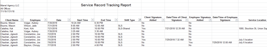 Service record tracking status report