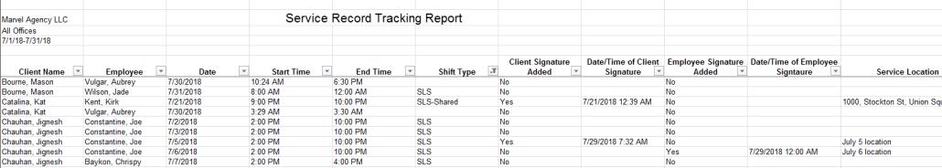 Service record tracking status report