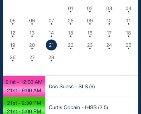 Shift detail summary_qsp mobile app
