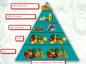 פירמידת המשון של דיאטת הזון