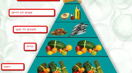 דיאטת הזון – אנר זון – הדיאטה של מדונה וג'ניפר אניסטון