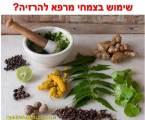 צמחי מרפא להרזיה