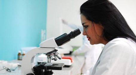 כדורי גרסיניה קמבוג'יה להרזיה מהירה – תוצאות מחקרים