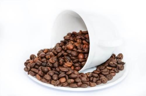 דיאטת משקה הקפה