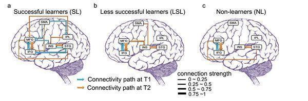 Aprender idiomas fortalece la mente