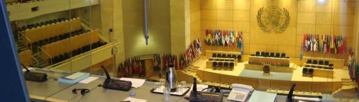 Intérprete Naciones Unidas