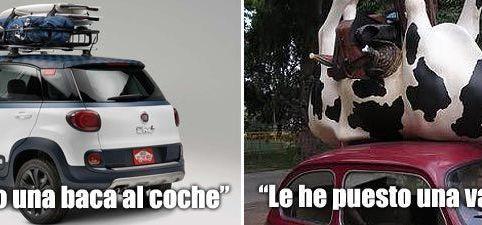 Baca y vaca