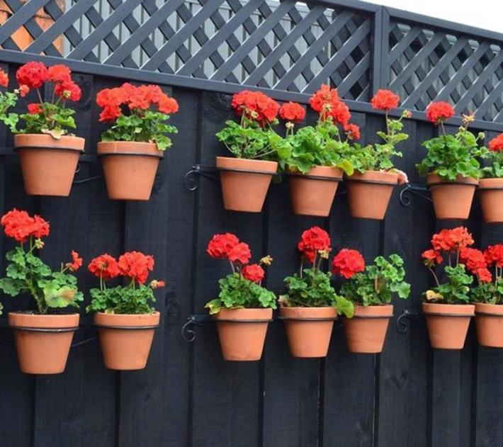 Container-Gardening-Ideas-2