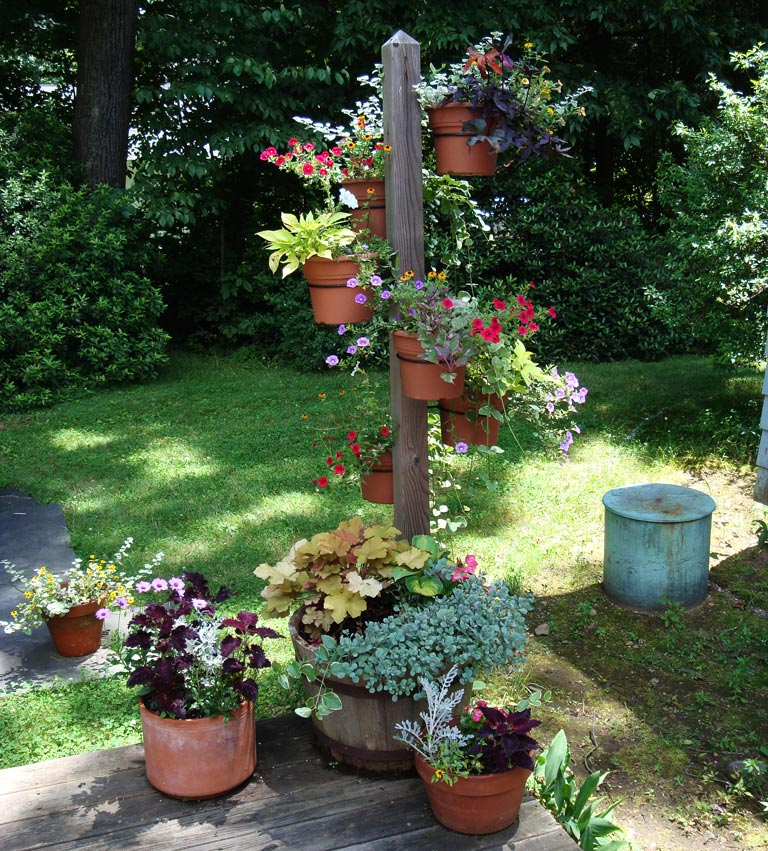 Quiet Corner:Container Gardening Ideas