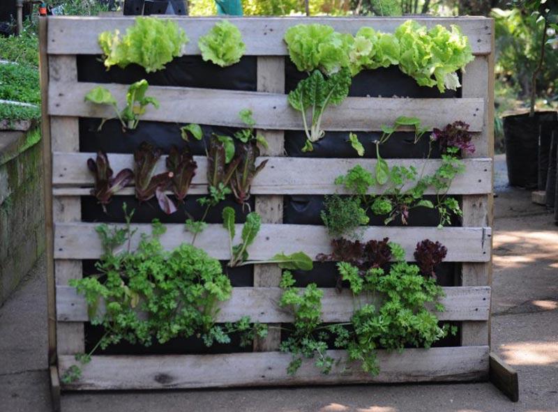 Vertical Vegetable Garden Ideas Part - 16: Vertical Vegetable Garden Ideas ...