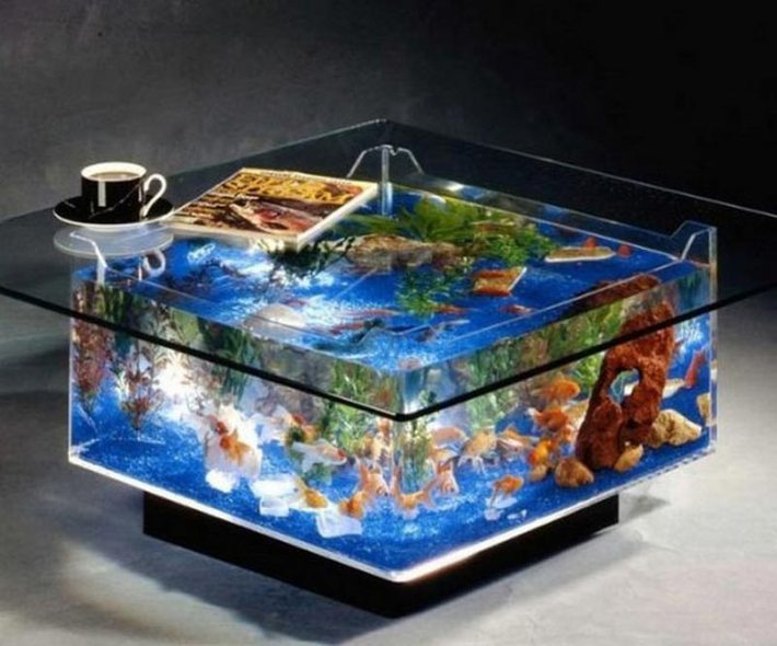 Beautiful Coffee Table Aquariums (14)