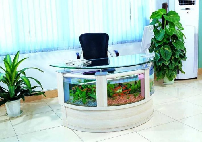 Beautiful Coffee Table Aquariums (18)