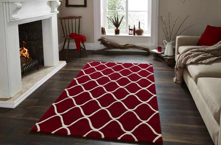 Carpet Ideas and Pictures (12)