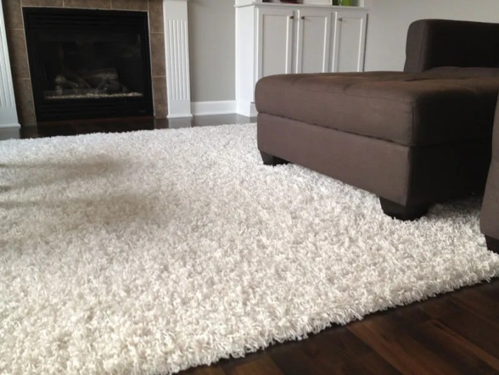 Carpet Ideas and Pictures (14)