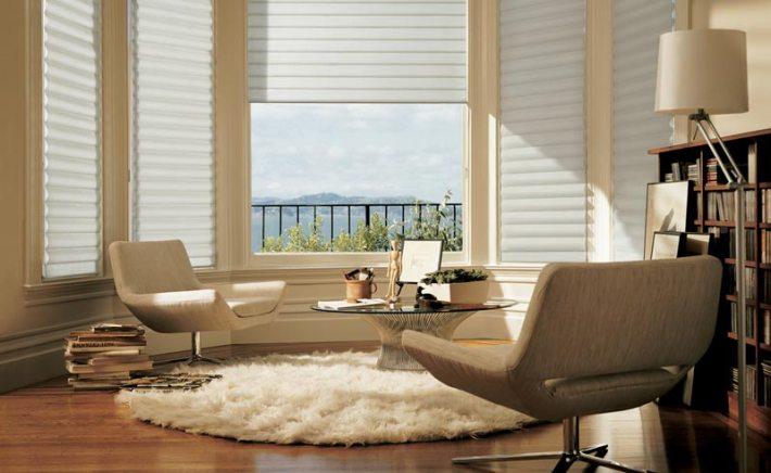Living Room Carpet Ideas and Photos (5)