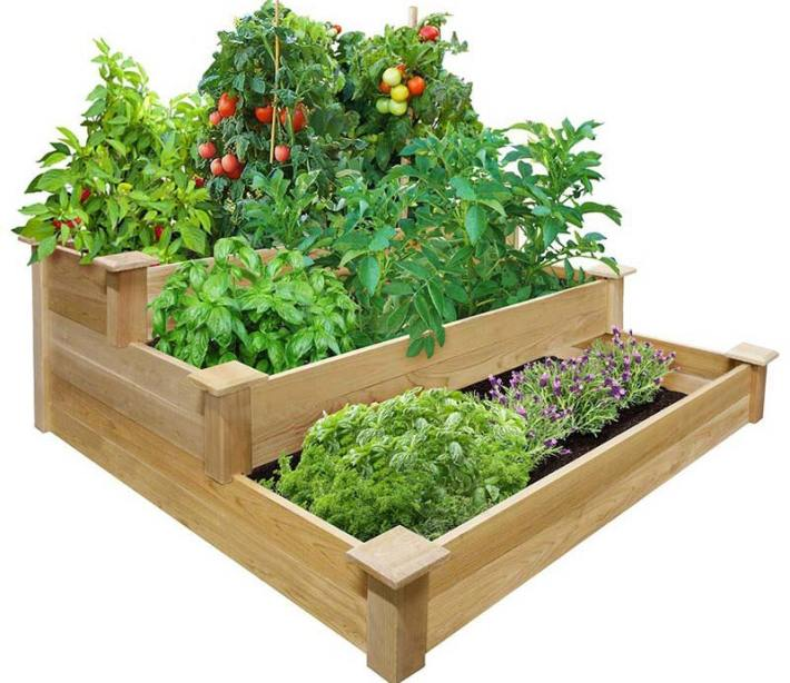 Quiet Corner Container Gardening Ideas: Quiet Corner:Vegetable Gardening With Raised Beds