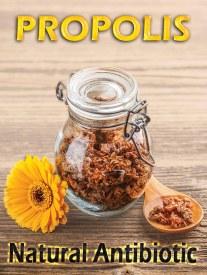 Propolis: A Natural Antibiotic