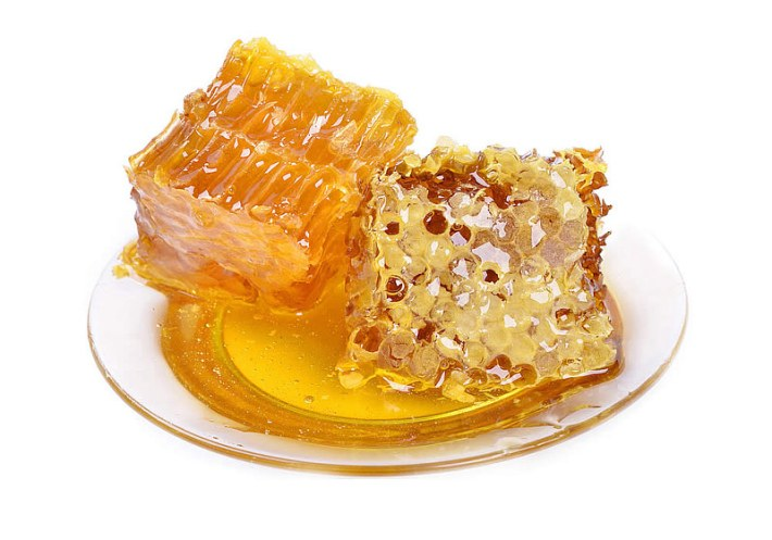 Propolis: A Natural Antibiotic