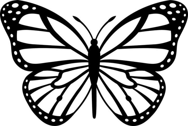 Butterfly Pattern Wall Decor (1)