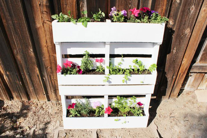 How to Build a Vertical Garden or Living Wall If you're short on space in your backyard, patio or balcony, but yearn to have more greenery and colorful foliage, build a vertical garden. #diy #gardening