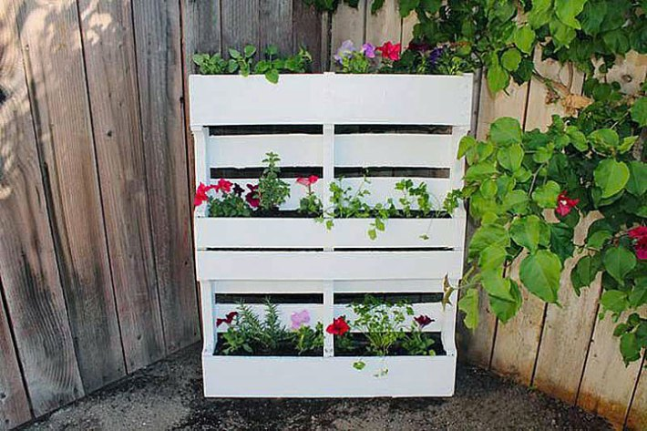 How to Build a Vertical Garden or Living Wall