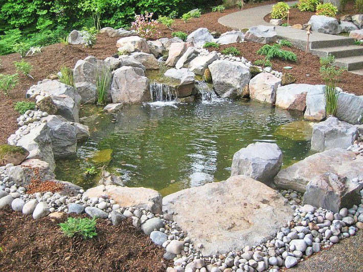 Quiet corner inspiring backyard pond ideas quiet corner for Corner fish pond