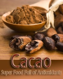 Cacao - Super Food Full of Antioxidants