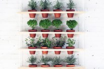 DIY Hanging Vertical Garden