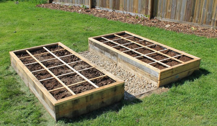 15 Vegetables to Plant Now for a Fall Harvest