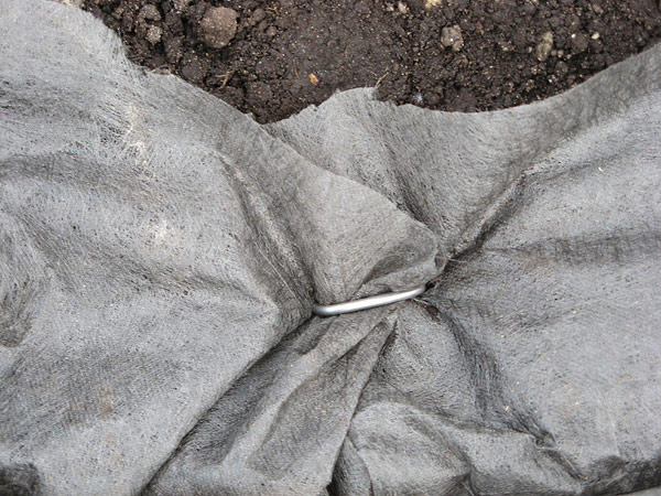 DIY - Island Bed with Retaining Wall Bricks