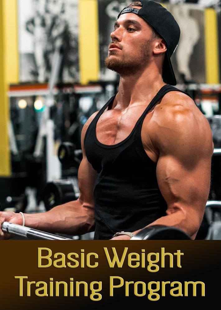 Basic Weight Training Program