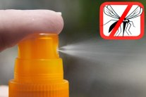 Make Your Own Mosquito Repellent