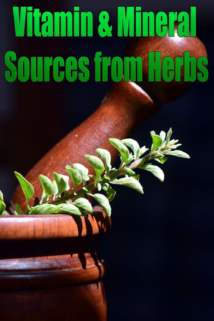 Vitamin & Mineral Sources from Herbs