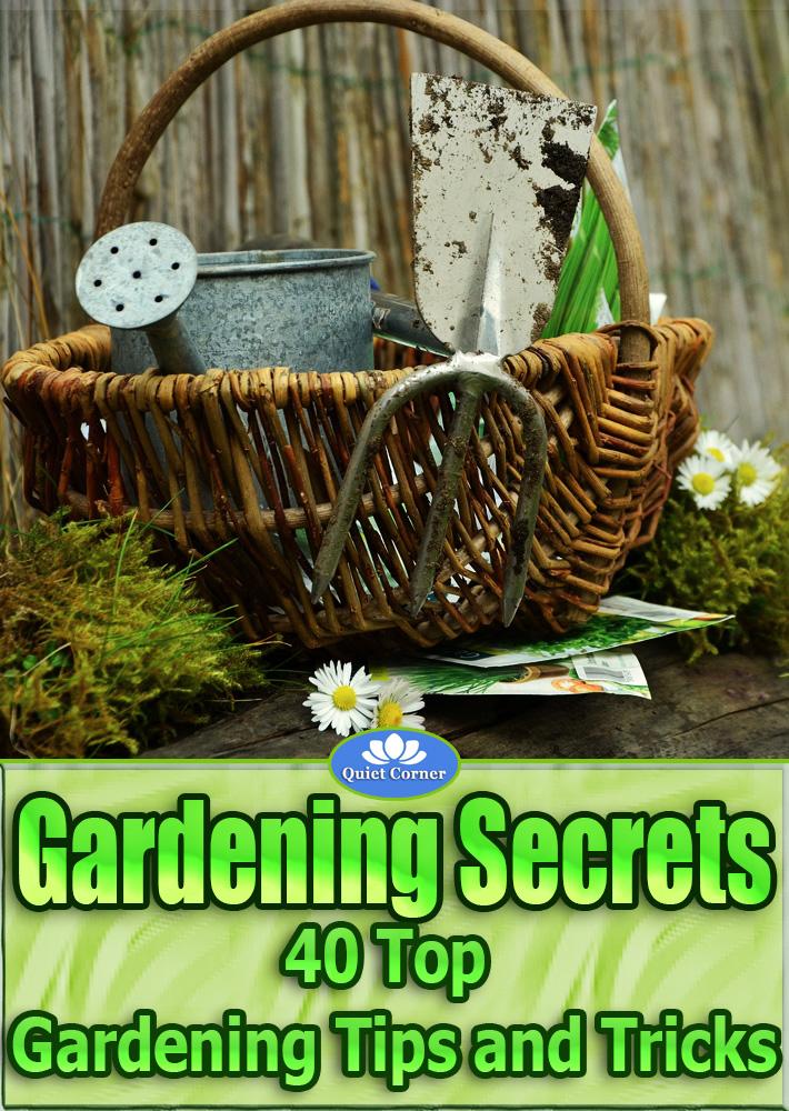 Gardening Secrets - 40 Top Gardening Tips and Tricks - Quiet Corner