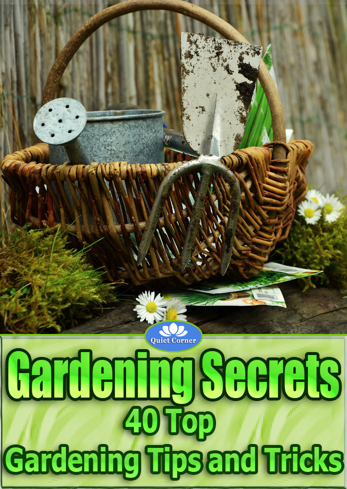 Gardening Secrets U2013 40 Top Gardening Tips And Tricks