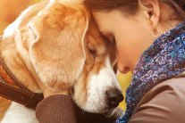 8 Pets Who Rescued Their Humans
