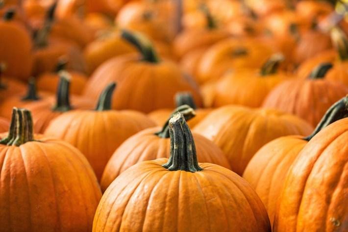 Pumpkin 8 Impressive Health Benefits