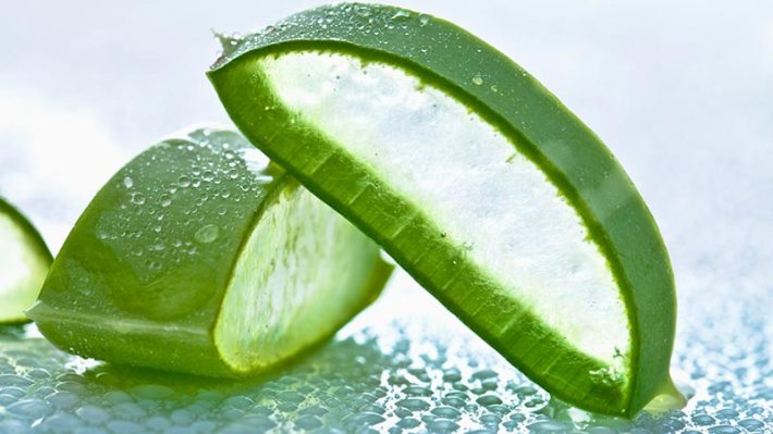 10 Things You Should Know About Aloe Vera